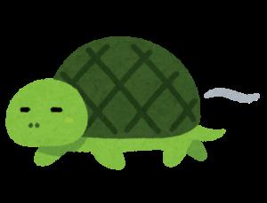歩みの鈍い亀