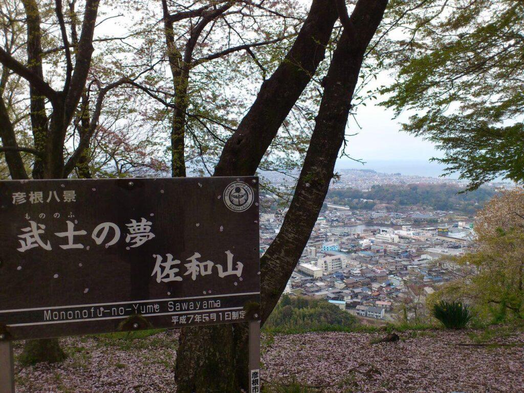 佐和山の頂上からの彦根城