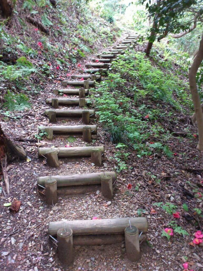 頂上へと向かう丸太の階段