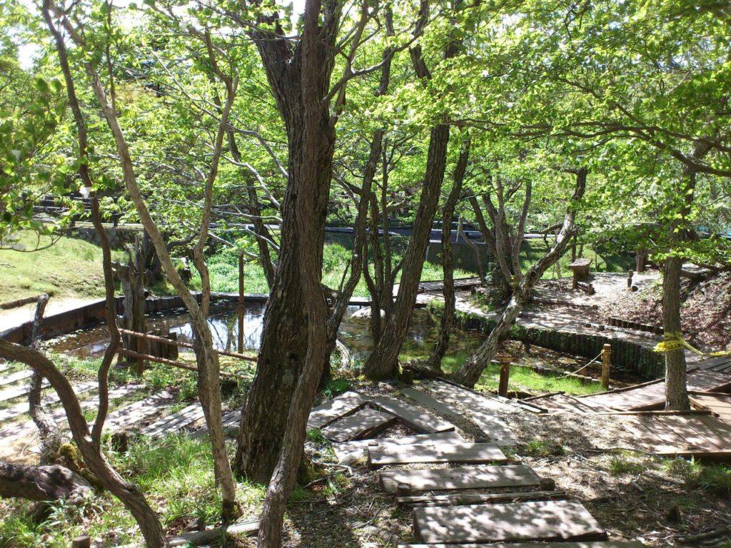 山上公園にある芭蕉園