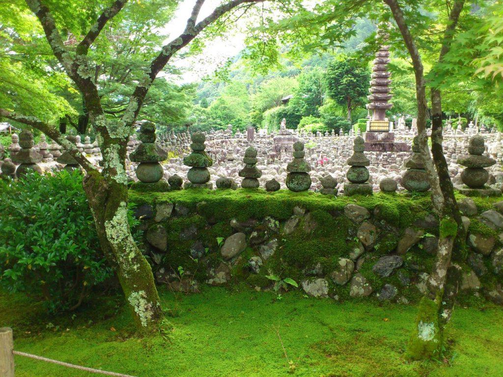 あだし野念仏寺のコケと石仏