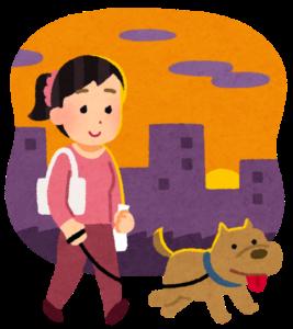 夕方に犬と散歩する女性