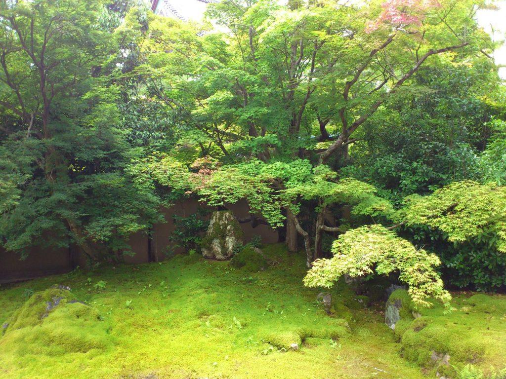 嵯峨釈迦堂の枯山水