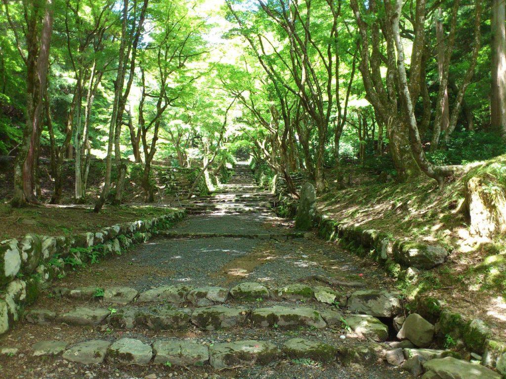 鶏足寺(旧飯福寺)の参道 その1