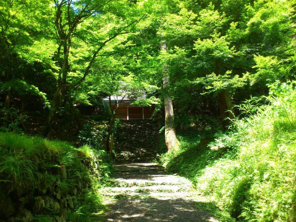 鶏足寺(旧飯福寺)の参道 その3
