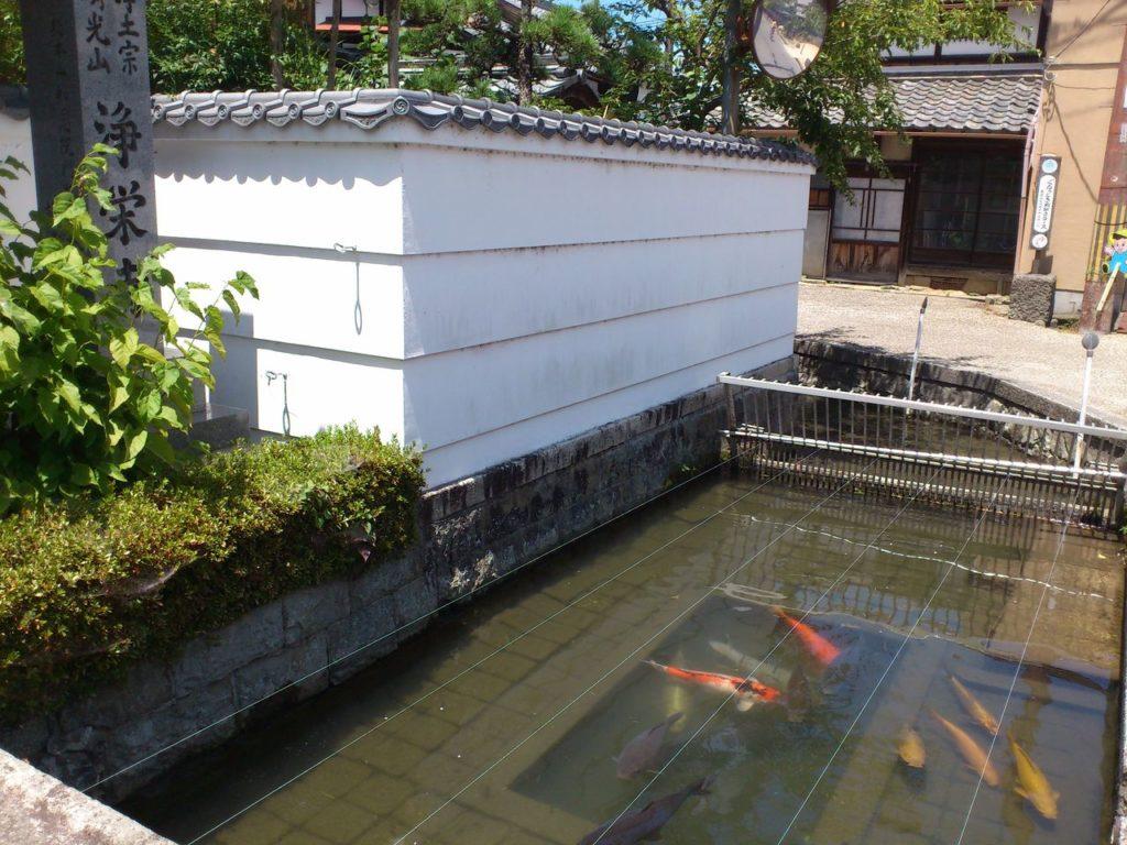 浄栄寺前の川