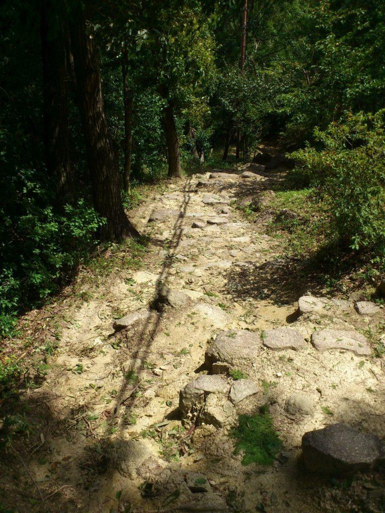 八幡山の下山道に残る石段