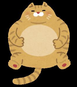 太ったペットの猫