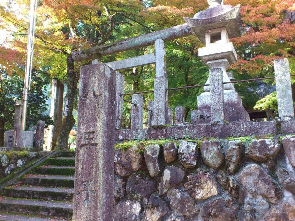 八王子神社のモミジ