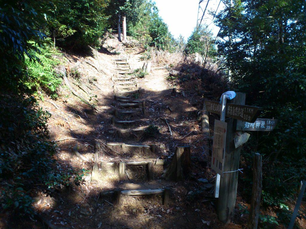 分岐点から丸太の階段