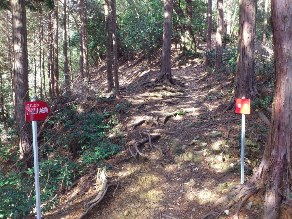 菩提山城跡の堅堀