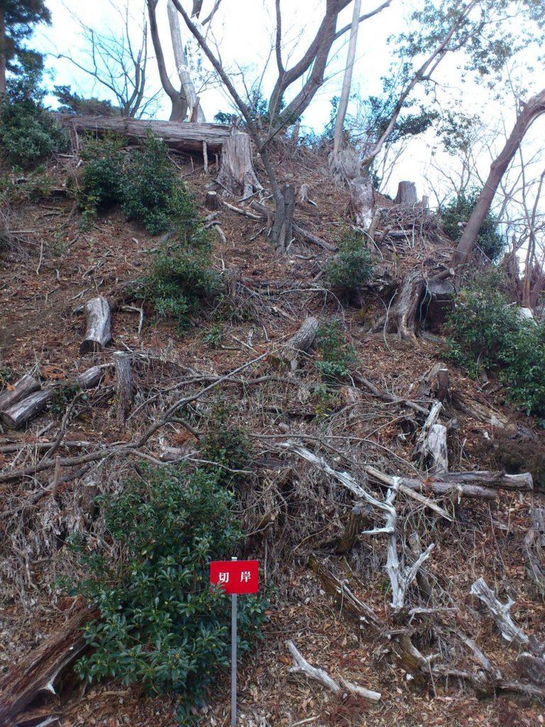 菩提山城跡の切岸