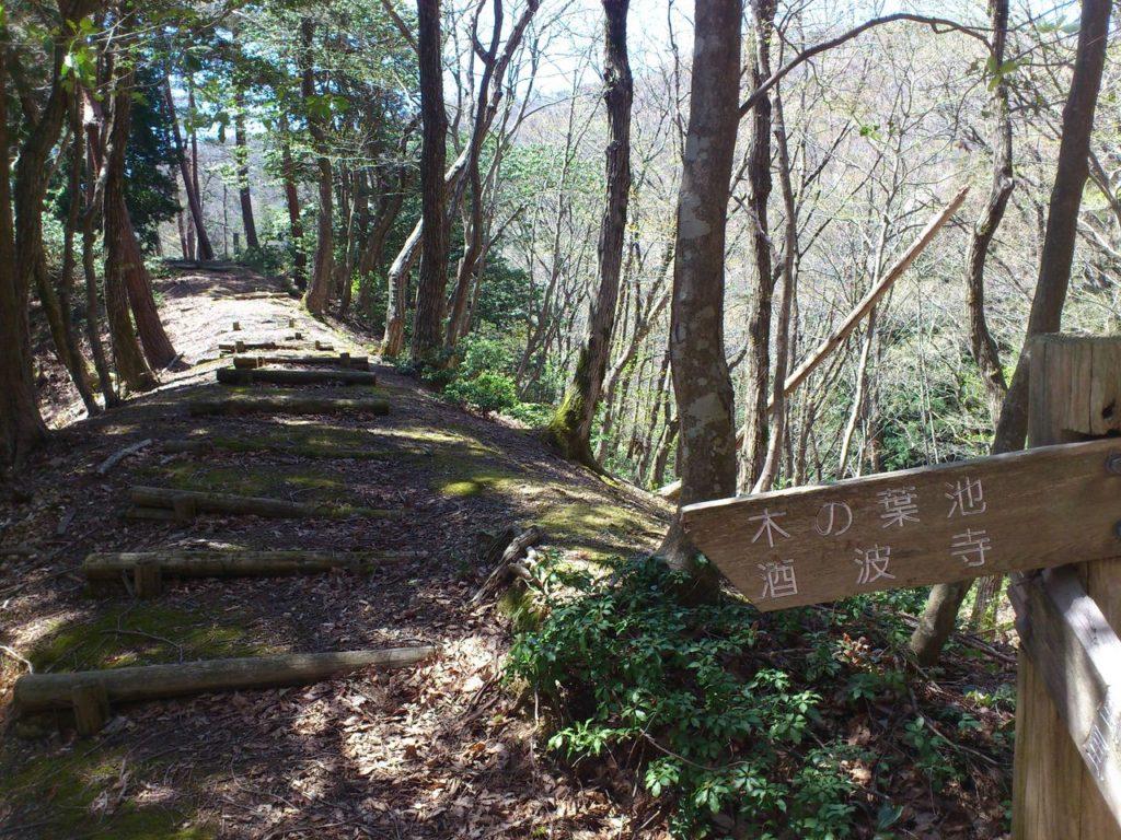 山辺の道の分岐点