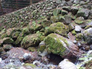 養老の滝の落石群