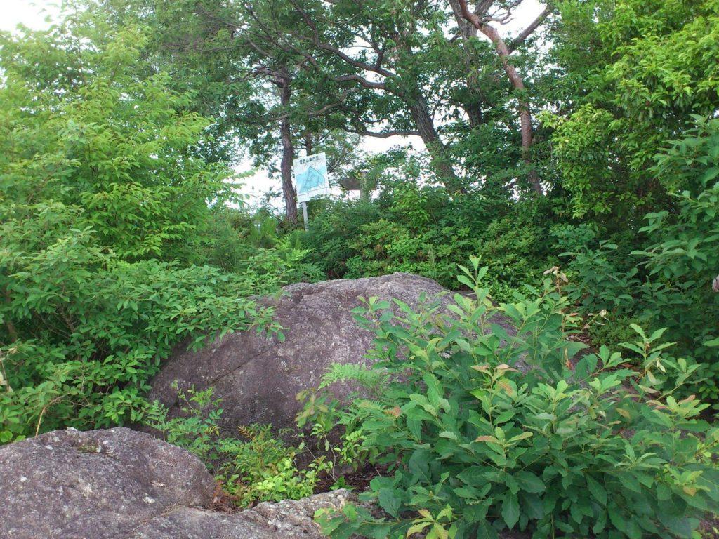 大岩から登山道へ