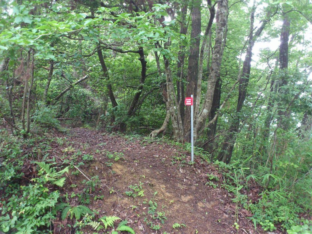 朝倉景健本陣跡への道