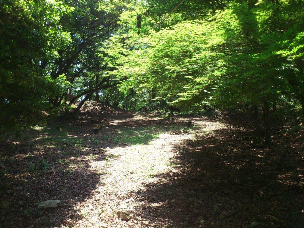 山本山城の本丸跡