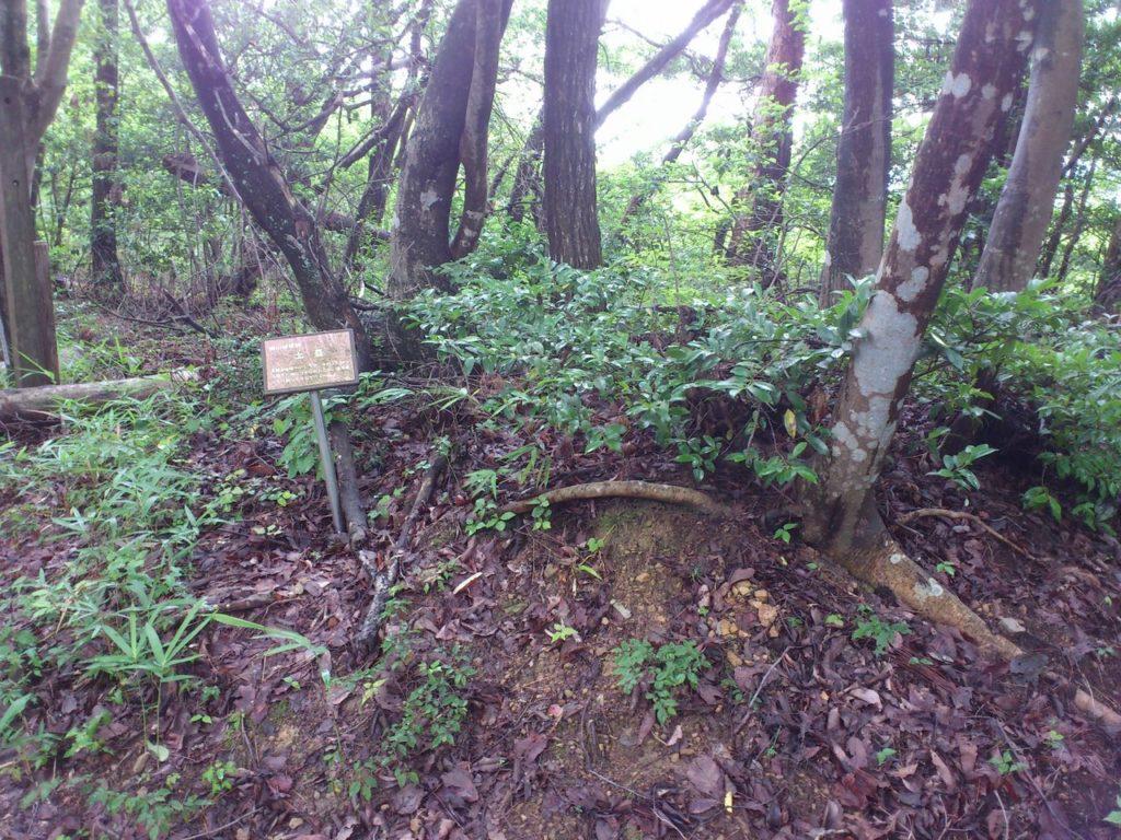 横山城の土塁跡