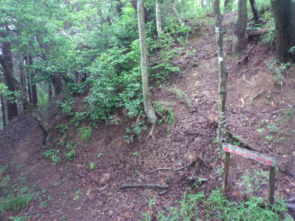 横山城の二段堀切跡(奥)