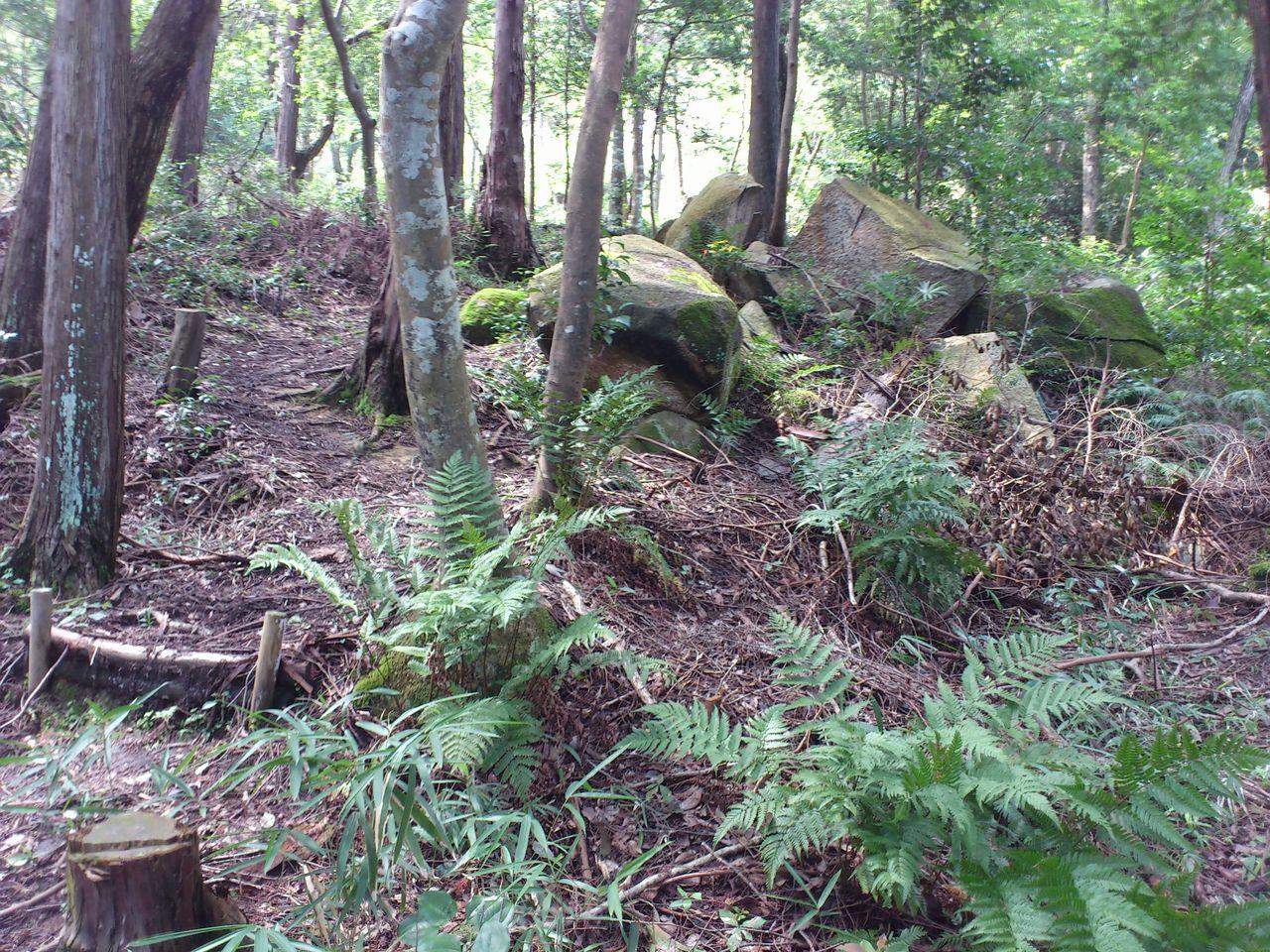 布施山の大岩群