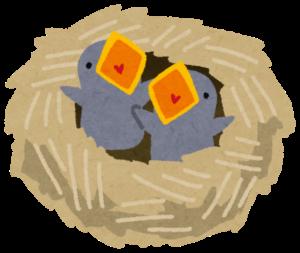 ヒナが鳴く鳥の巣