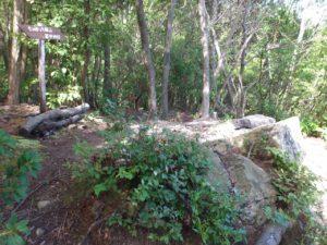 水郷展望台の岩場