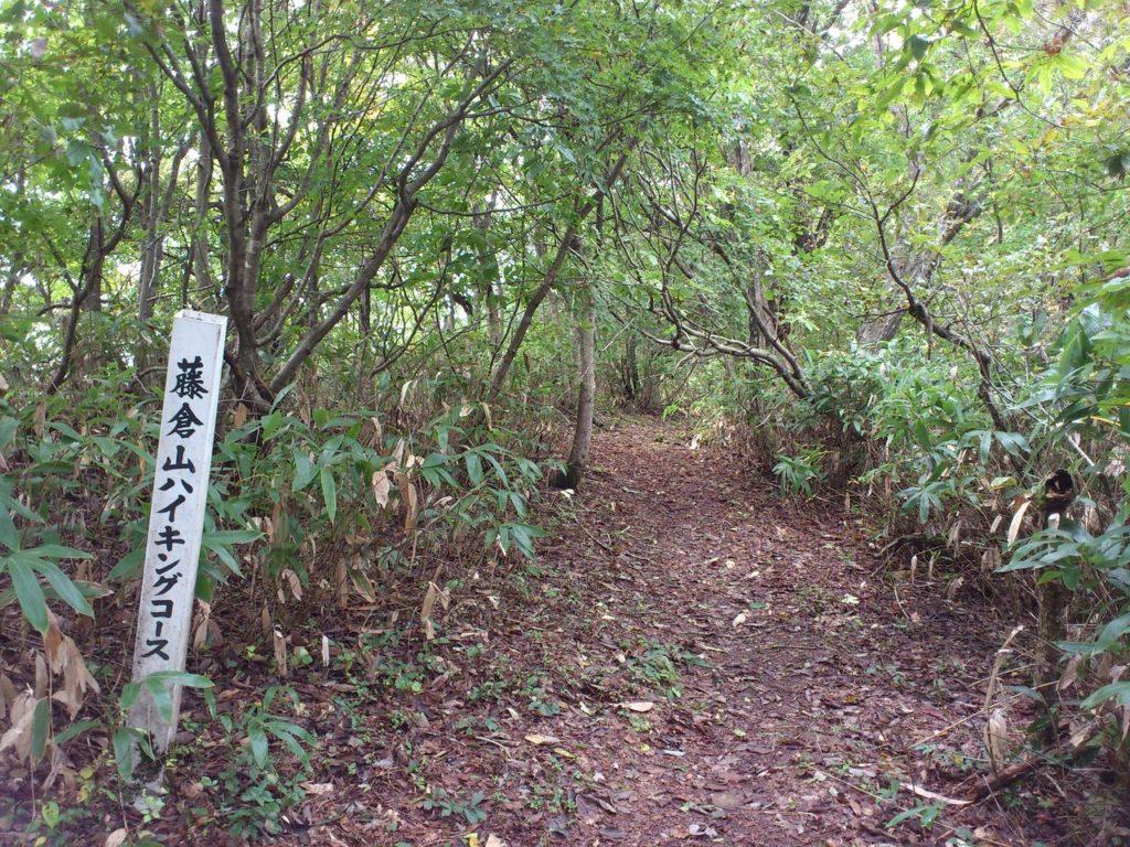 藤倉山ハイキングコース