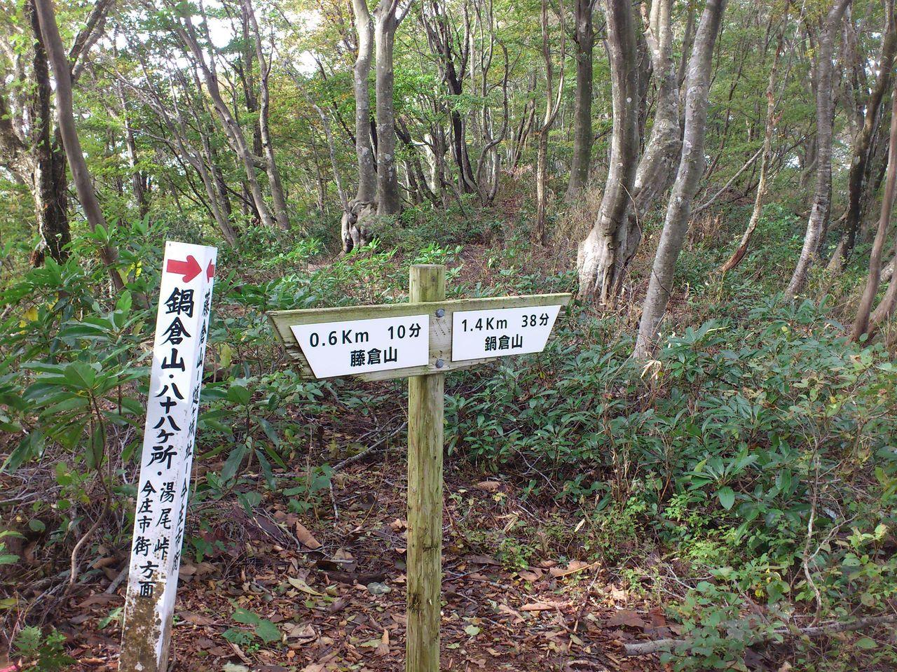 鋭角に曲がる山道