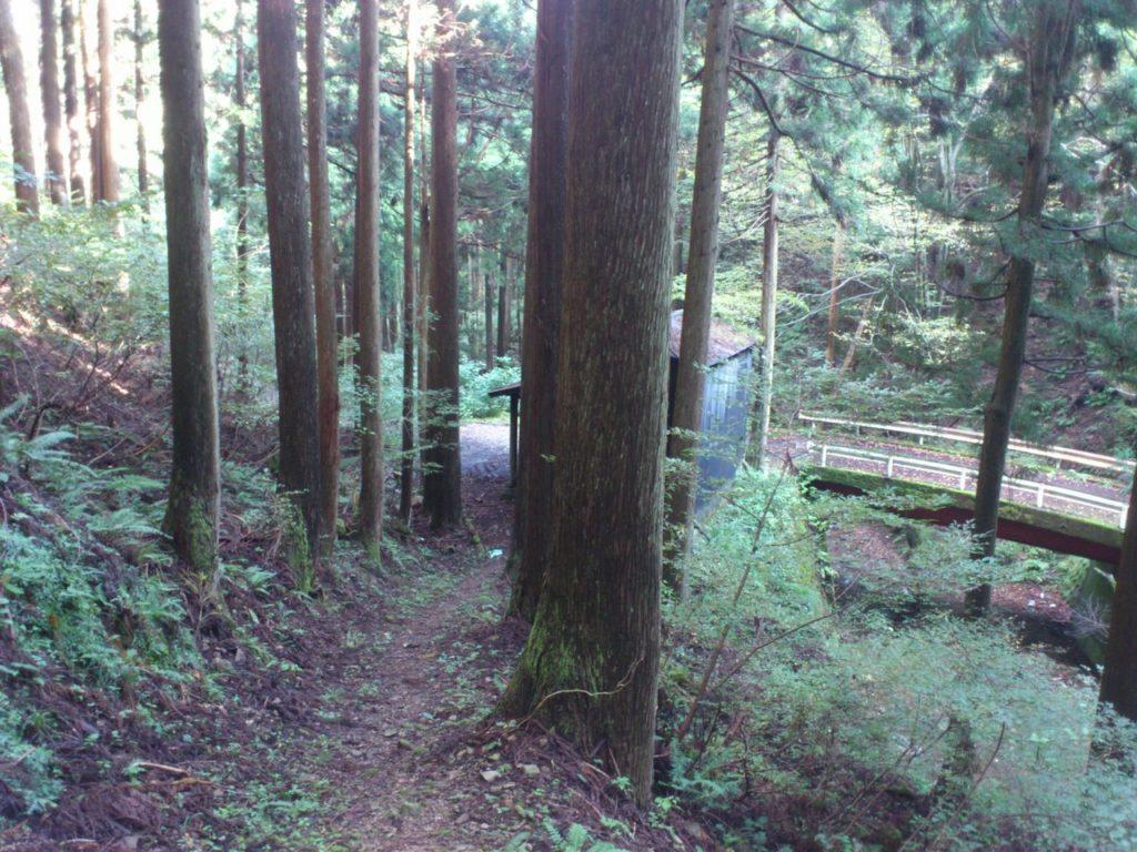 林道と小屋