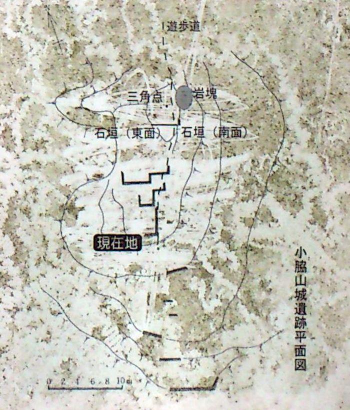 小脇山城遺跡平面図