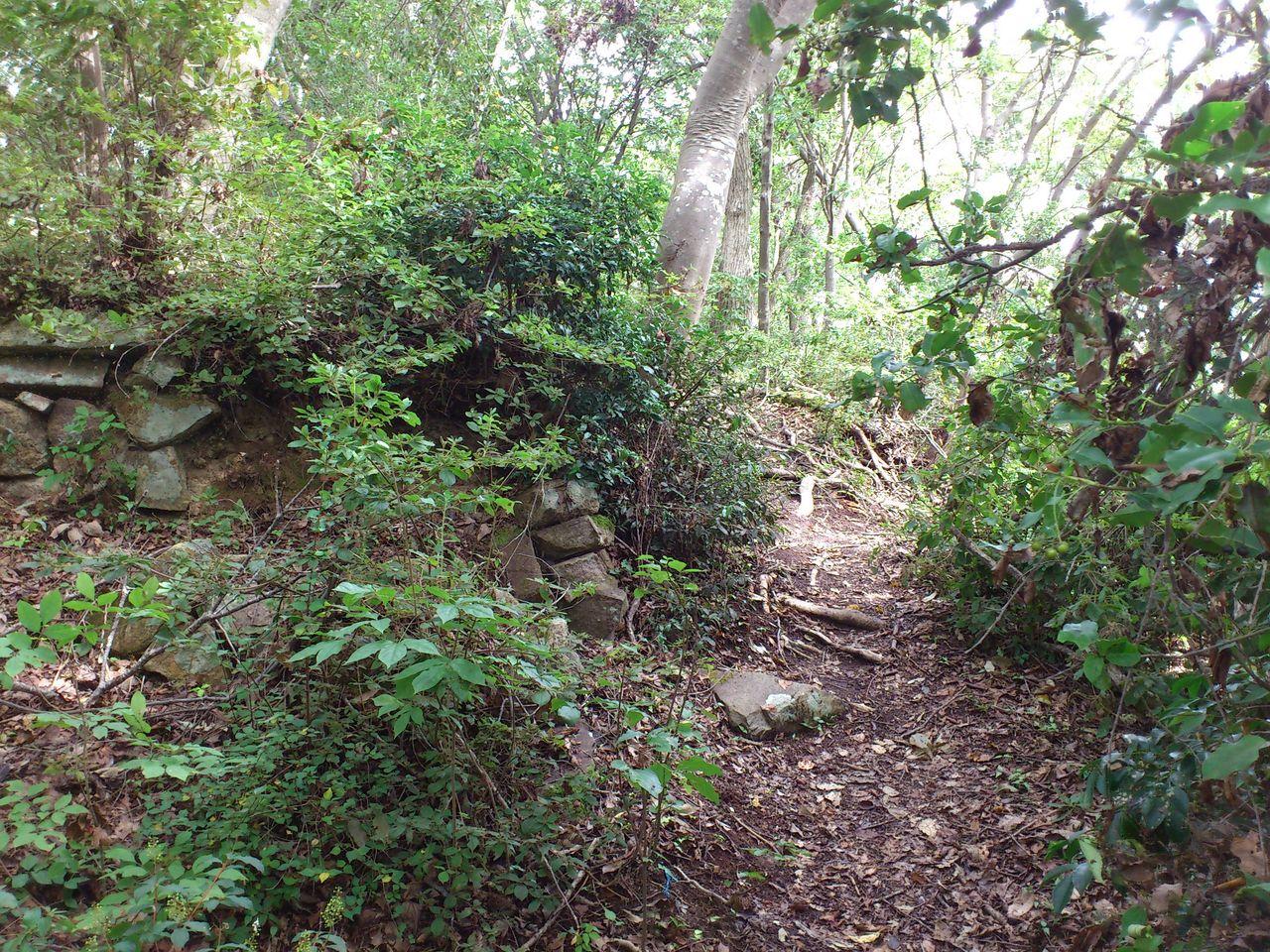 小脇山城遺跡の石垣