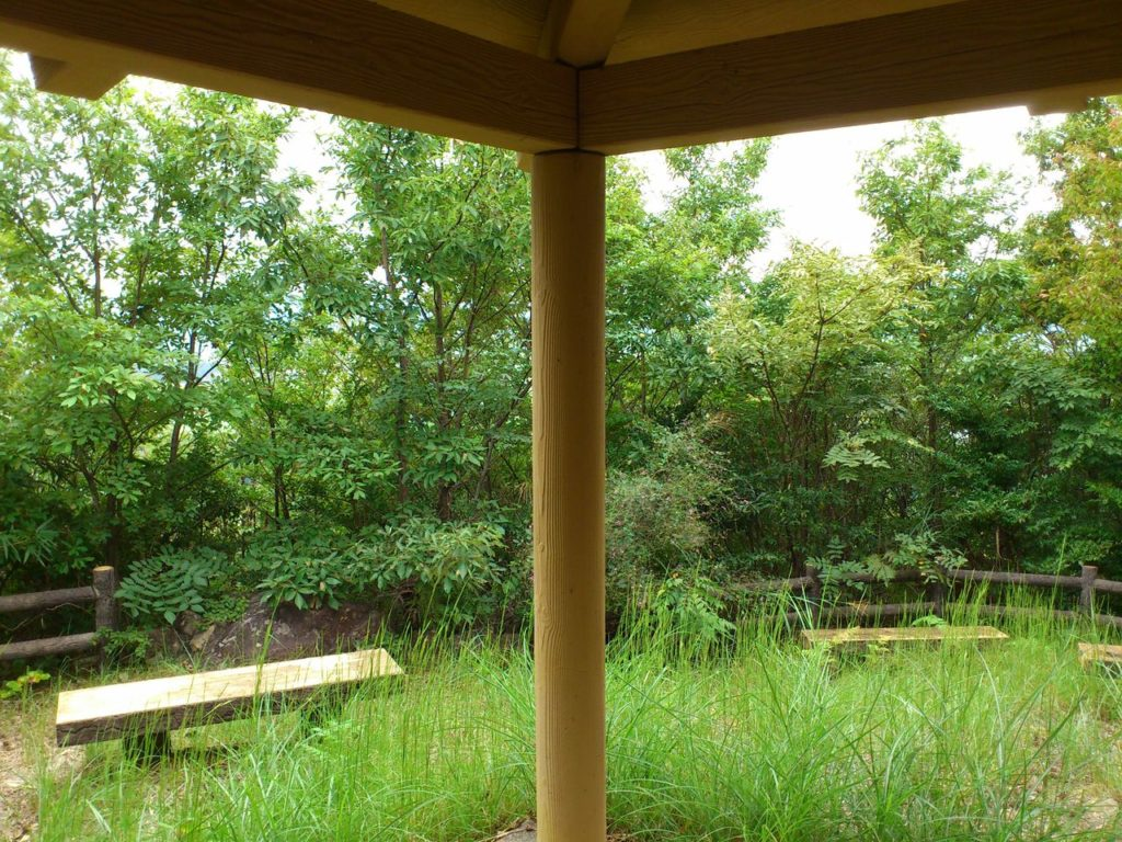 休憩所からの眺め