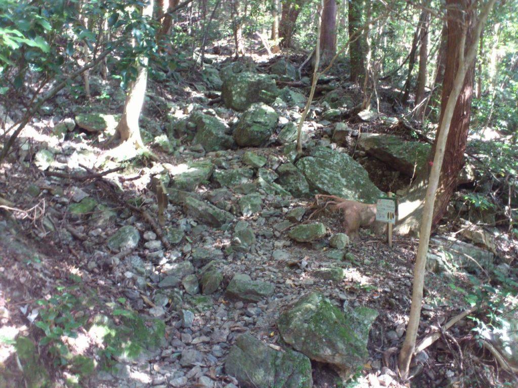 岩が散らばる登山道