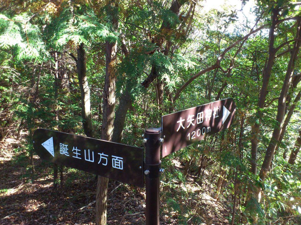 分岐点(左)誕生山(右)大矢田神社