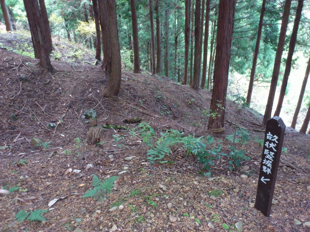 鎌刃城跡の畝状竪堀群