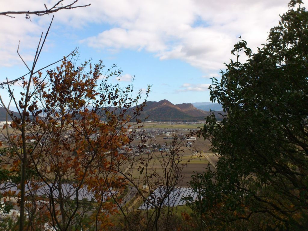 木立の間から見える箕作山