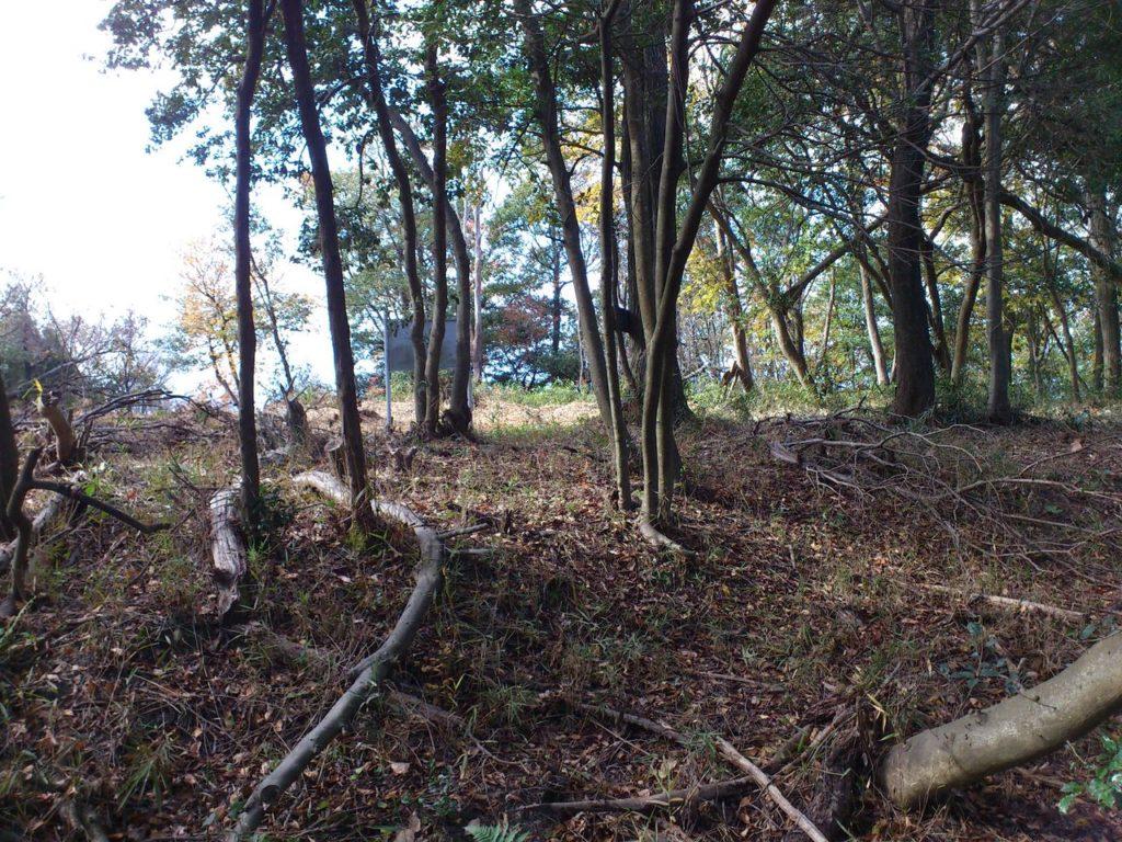 瓶割山城遺跡の一の郭へ