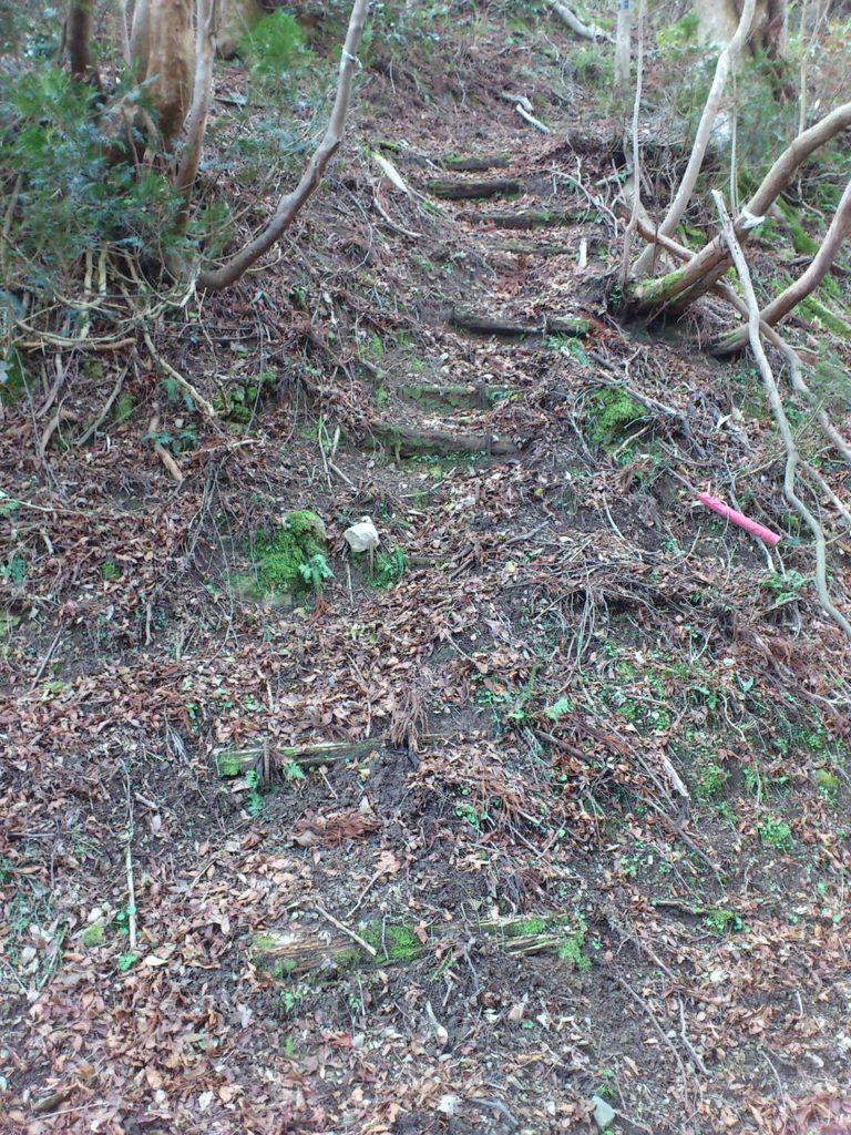 行市山砦跡へと続く尾根筋の登り口