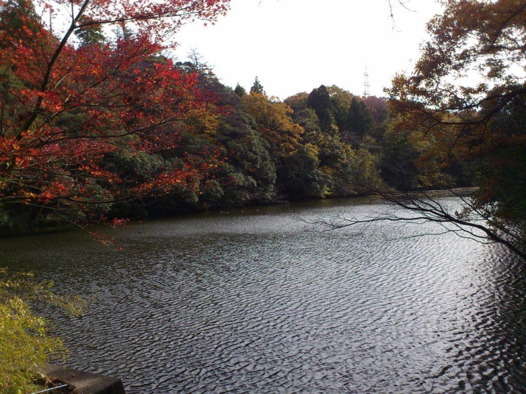 那谷寺の大池