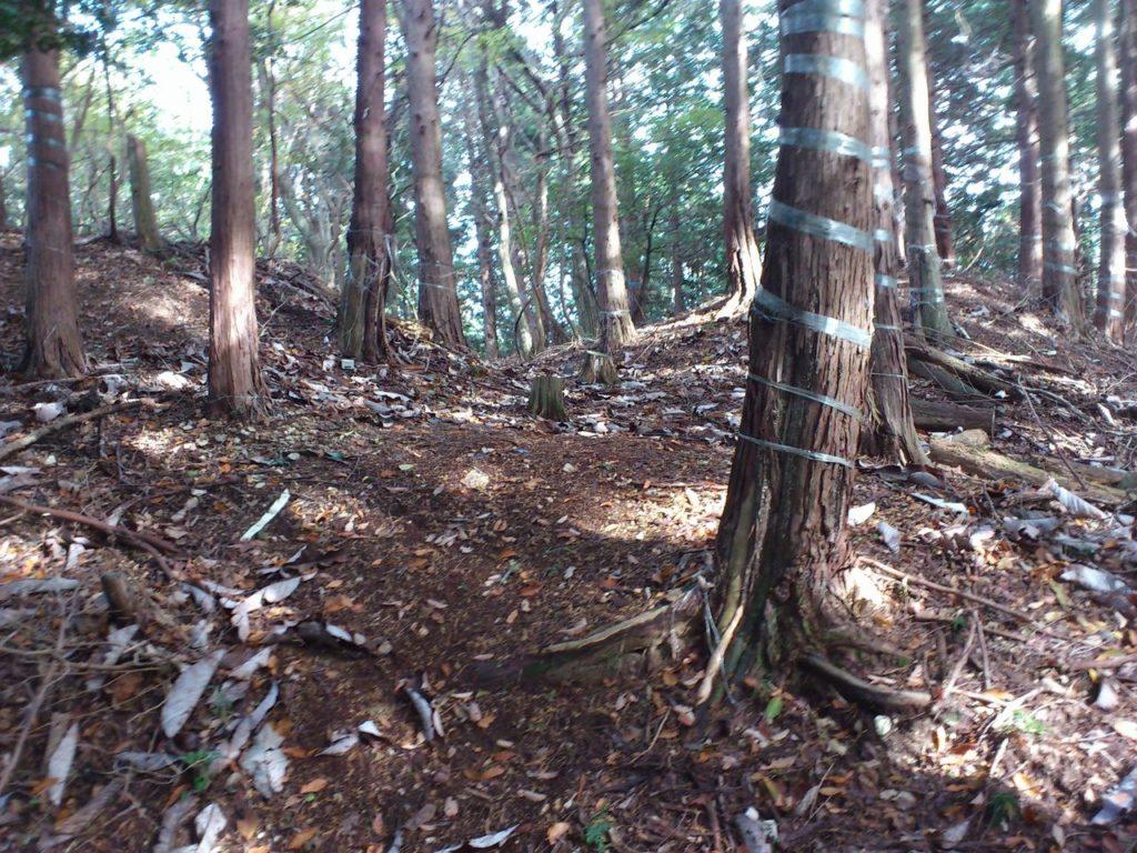 須川山砦跡南側