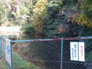 須川集落の池