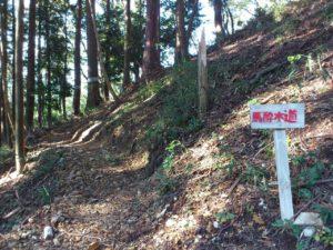 野瀬山の馬酔木道
