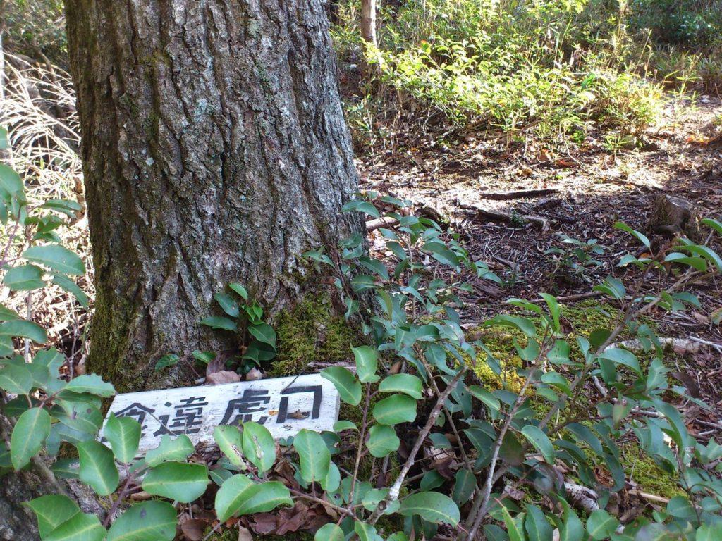 木の根元の「食違虎口」