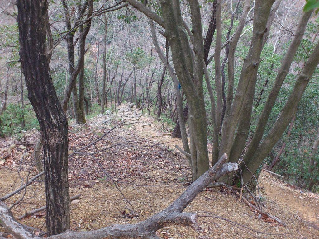 階段の先には岩場が見える