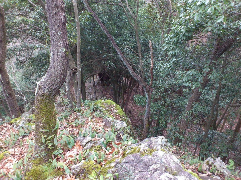 健脚コース途中の巨岩