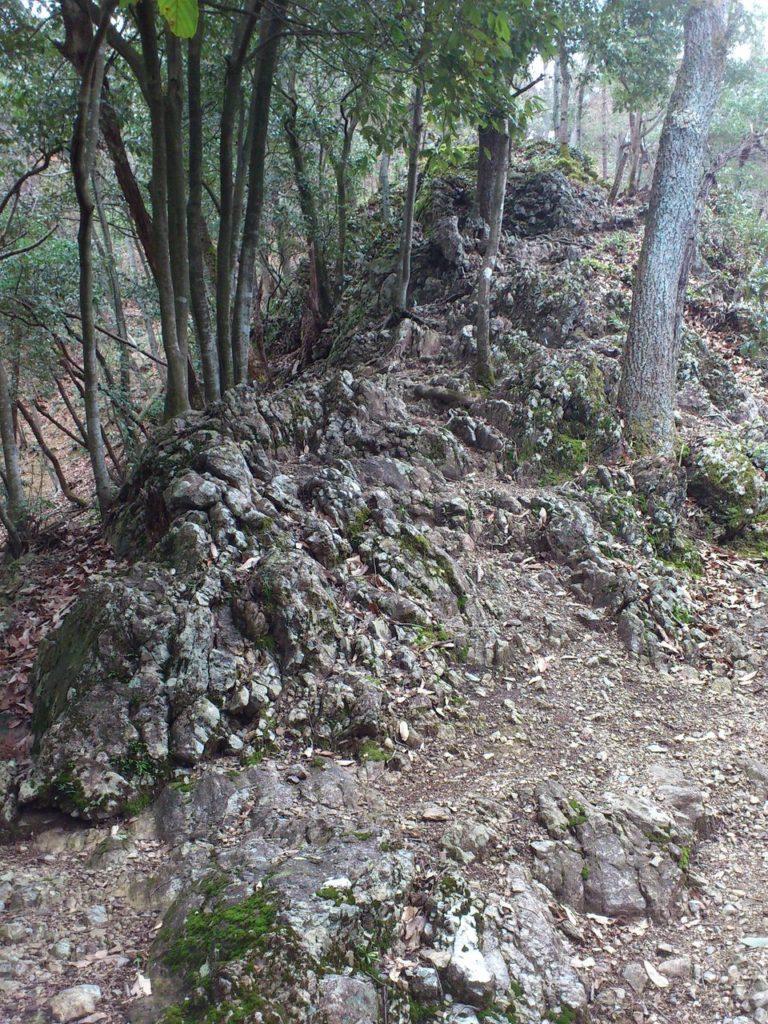 途中の巨岩を下から見上げて