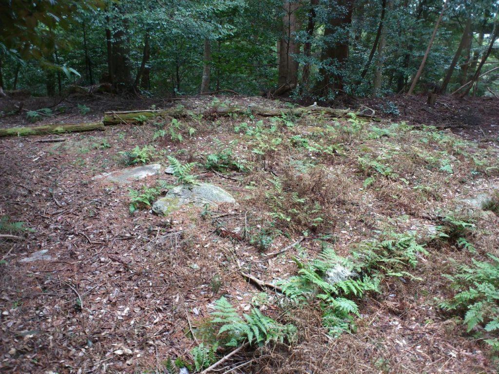 土のうで縁取られた五重塔跡