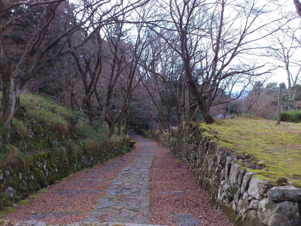 長い長い百済寺の表参道