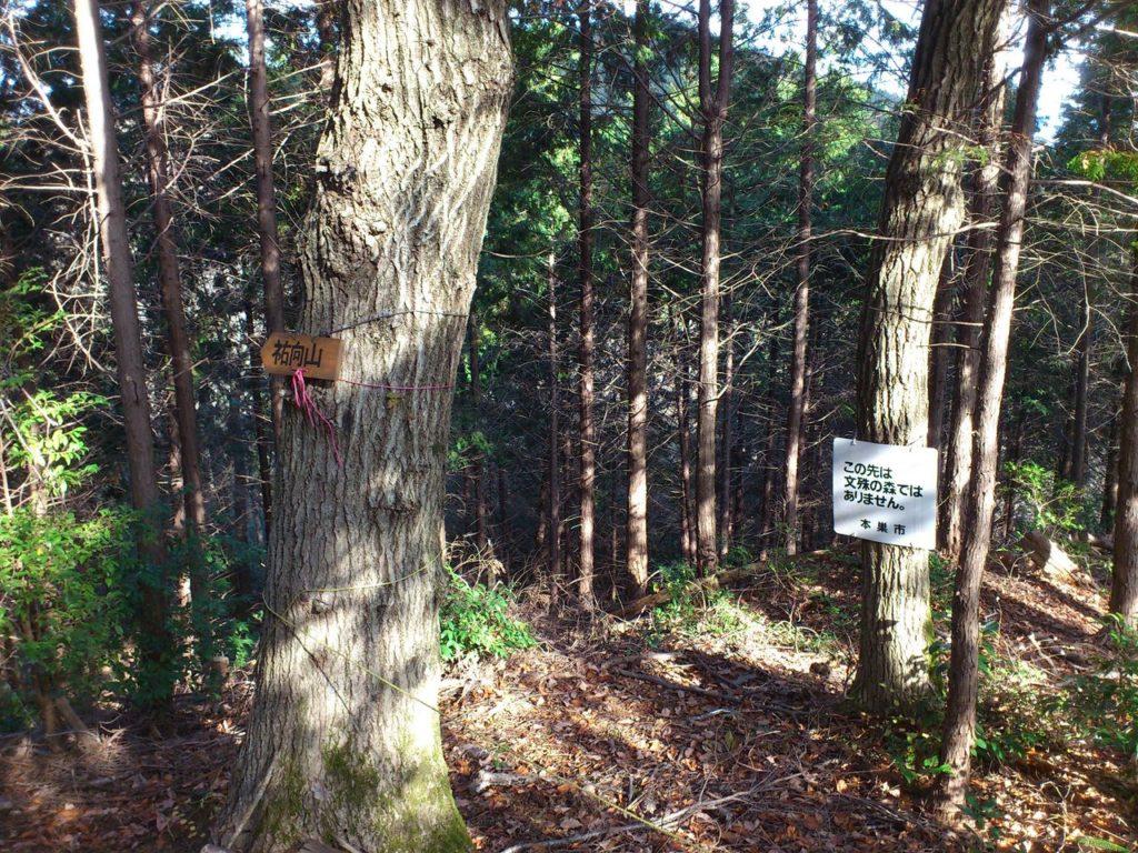 文殊の森の北東端