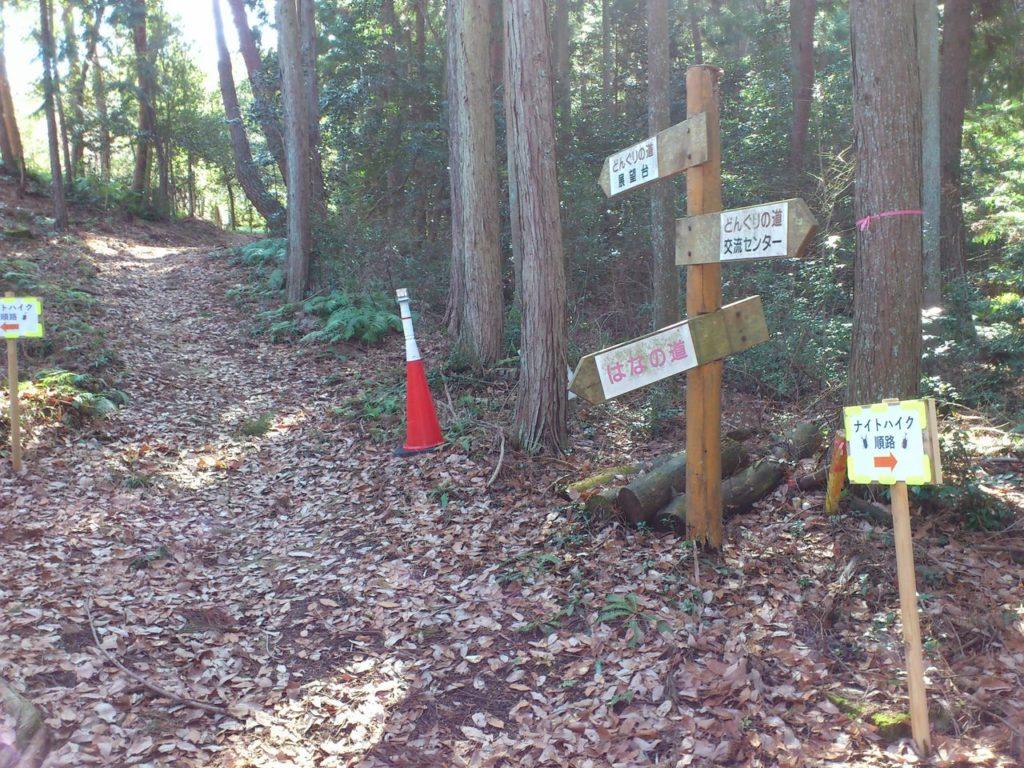 ドングリの道の分岐点(左)はなの道(奥)展望台